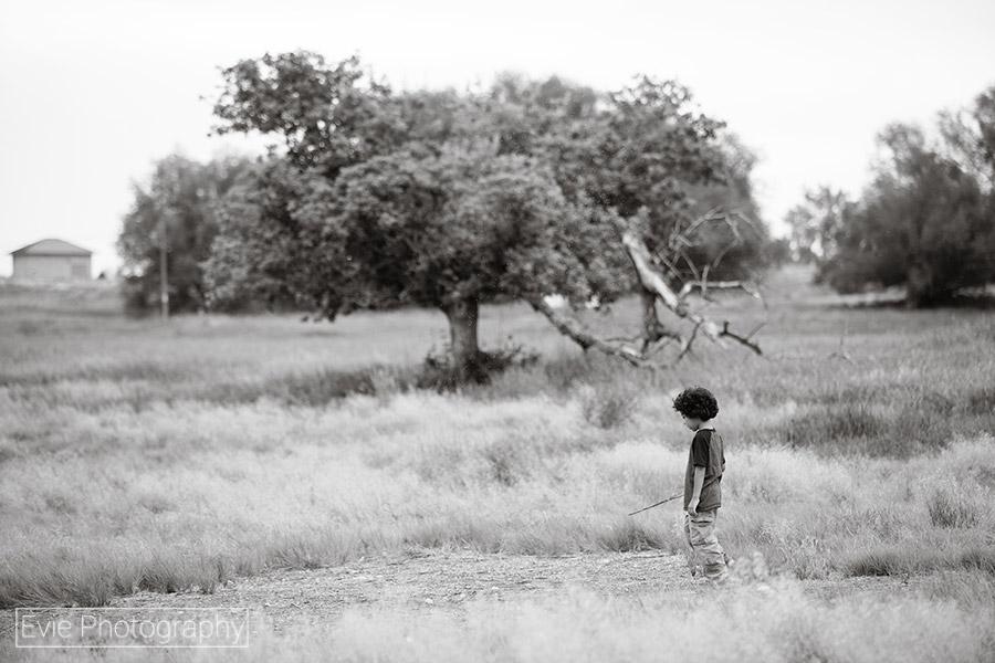 boulder-denver-family-portrait-photographer-evie-photography-3